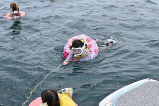海で泳ぐ子供の写真・画像素材[2432759]