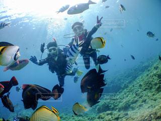 水の中を泳ぐ人々のグループの写真・画像素材[2433931]
