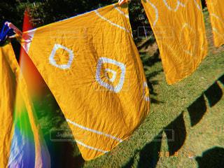 黄色いハンカチの写真・画像素材[2440022]