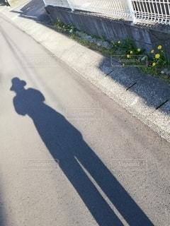 人影とタンポポの写真・画像素材[2435259]