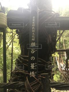 祖谷のかずら橋の写真・画像素材[2435124]