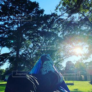 木と自然と日光と靴の写真・画像素材[2435551]
