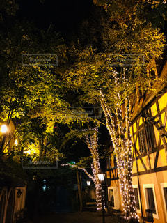 夜にライトアップされた街の写真・画像素材[2437529]