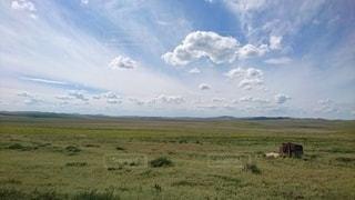 モンゴルの草原の写真・画像素材[2441178]