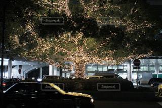 クリスマスツリーの写真・画像素材[858230]