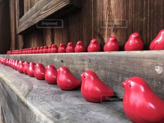 シャネルの赤い鳥の写真・画像素材[2444681]