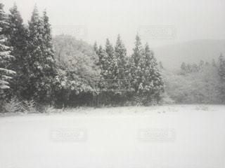 自然 - No.94257