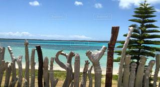 水域の隣にある木製のベンチの列の写真・画像素材[2448603]