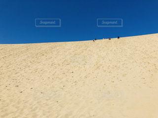 砂浜のクローズアップの写真・画像素材[2448761]