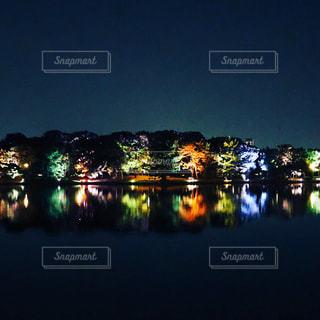 水域の隣の信号の写真・画像素材[2452093]