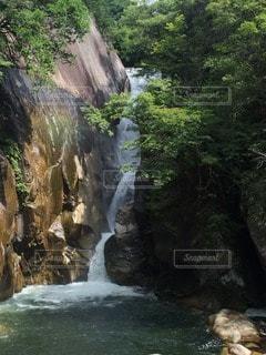 自然の写真・画像素材[103326]