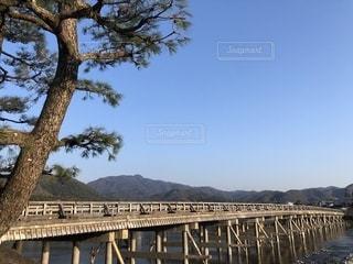 京都 朝の渡月橋の写真・画像素材[2451734]