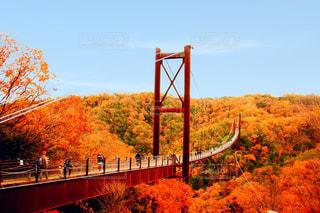 水域に架かる橋の写真・画像素材[2452333]
