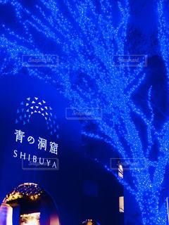 一面、青の光の写真・画像素材[2901468]