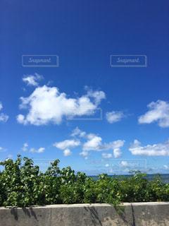 石垣島の写真・画像素材[2451761]