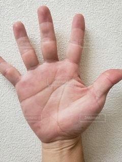 右手の手相の写真・画像素材[2460999]