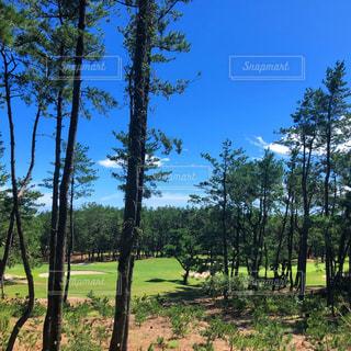 ゴルフ場の写真・画像素材[2473207]