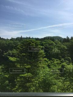 自然の写真・画像素材[126886]