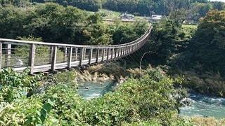 つり橋の写真・画像素材[2459952]