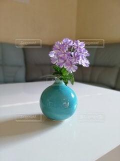 花の写真・画像素材[2484384]
