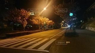 深夜の横断歩道の写真・画像素材[2501709]