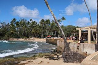 ビーチで空気を通って飛んで男の写真・画像素材[990327]