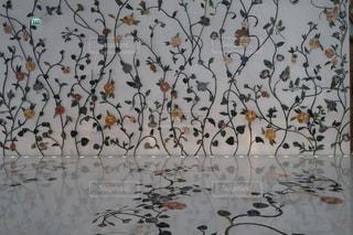 花の写真・画像素材[1689808]