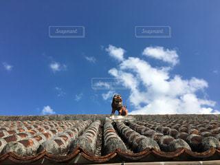 屋根の上のシーサーの写真・画像素材[2464364]