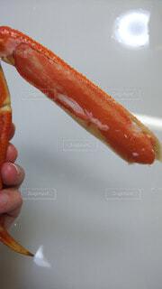 蟹を剥きましたの写真・画像素材[4017436]