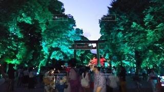 下鴨神社の写真・画像素材[2466408]