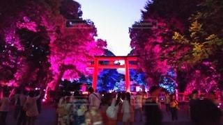 下鴨神社夜景の写真・画像素材[2466410]