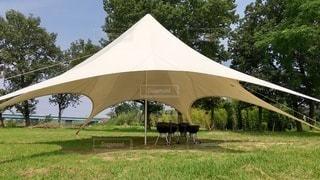 芝生とテントの写真・画像素材[3522453]