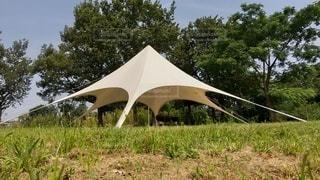 芝生とテントの写真・画像素材[3522454]