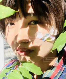 木漏れ日と女の子の写真・画像素材[2611053]