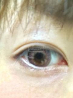 目の写真・画像素材[2481783]