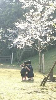 桜をバックに仲良く自撮りの写真・画像素材[2758500]