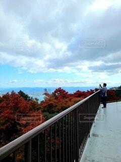 比叡山の眺望の写真・画像素材[3876190]