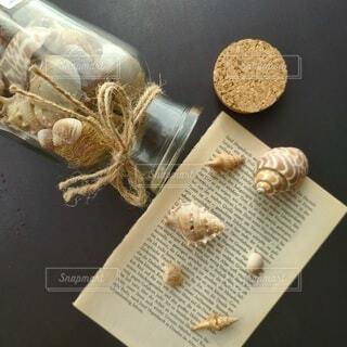 貝殻をお洒落に撮りましたの写真・画像素材[3923728]