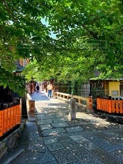 京都の巽橋の写真・画像素材[4546807]