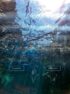 水中みたいな風景の写真・画像素材[4659008]