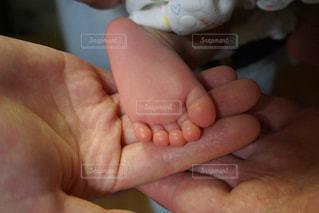 愛しい小さな足♡の写真・画像素材[2487544]