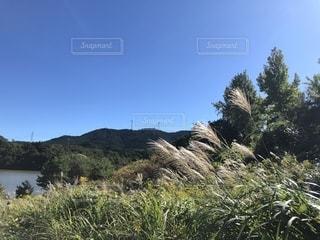 秋の山と湖の写真・画像素材[2722470]