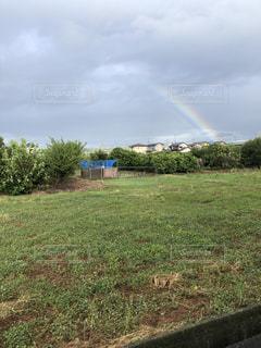 草の畑の上の虹の写真・画像素材[2743411]