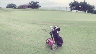 ゴルフ女子⛳️の写真・画像素材[2491671]