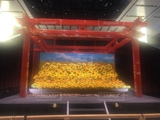 羽田空港にて🌻の写真・画像素材[2491885]