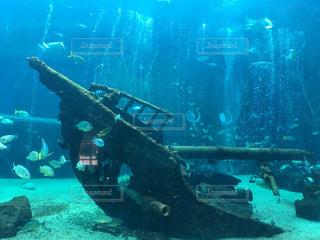 船に集まる魚の写真・画像素材[2504420]