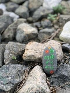 自由の石の写真・画像素材[2509346]