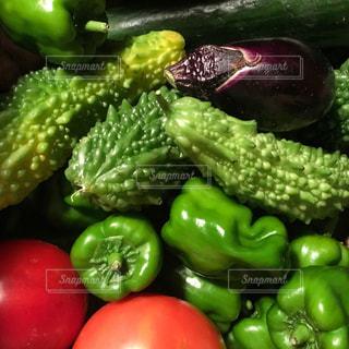 野菜のグループの写真・画像素材[2495394]