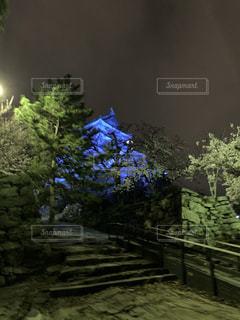和歌山城ライトアップの写真・画像素材[2497765]