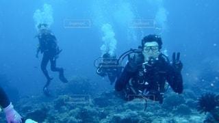 スキューバダイビング中の人の写真・画像素材[2501581]